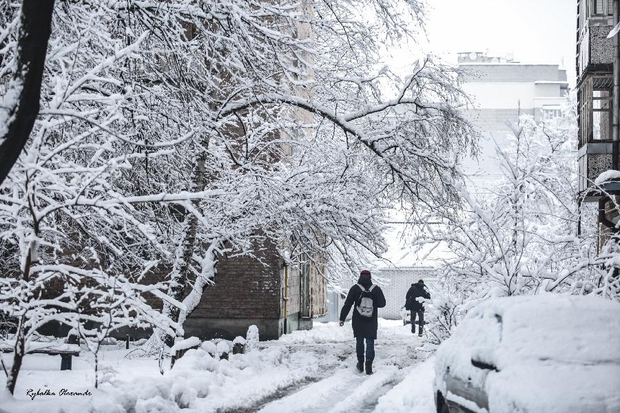 Черкаси у сніговому полоні