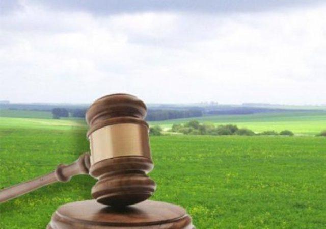 У Кам\'янському районі незаконно передали в оренду 2 земельні ділянки
