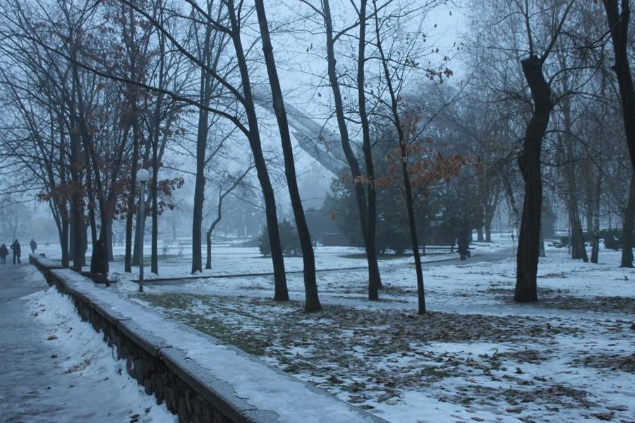Самотній міський парк і його мешканці