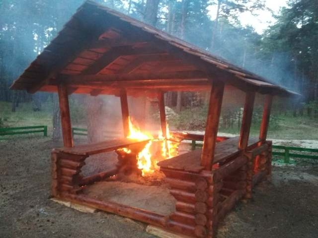У лісі на Чигиринщині вандали підпалили альтанку (ФОТО)