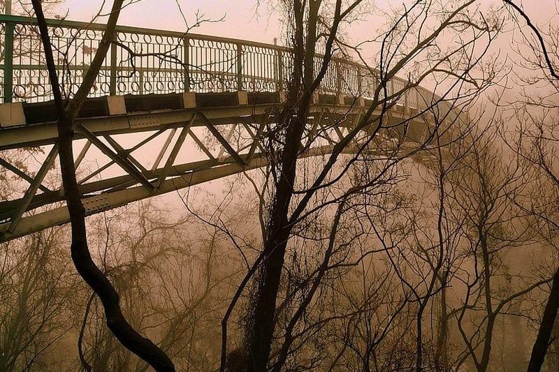 Прокляте місце. Міст на той світ