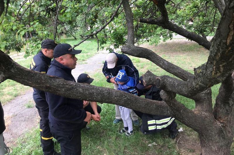 Щоб звільнити дитину, черкаським рятувальникам довелося розпилювати дерево (ВІДЕО)