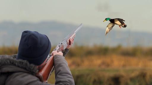 На Черкащині склали понад 60 протоколів щодо порушення правил полювання