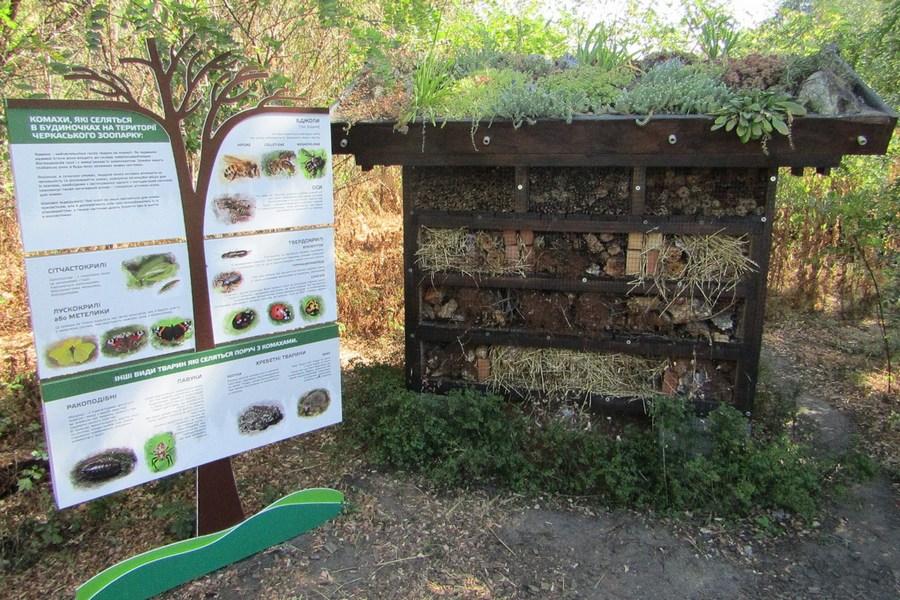 У Черкаському зоопарку відкрили будиночок для комах