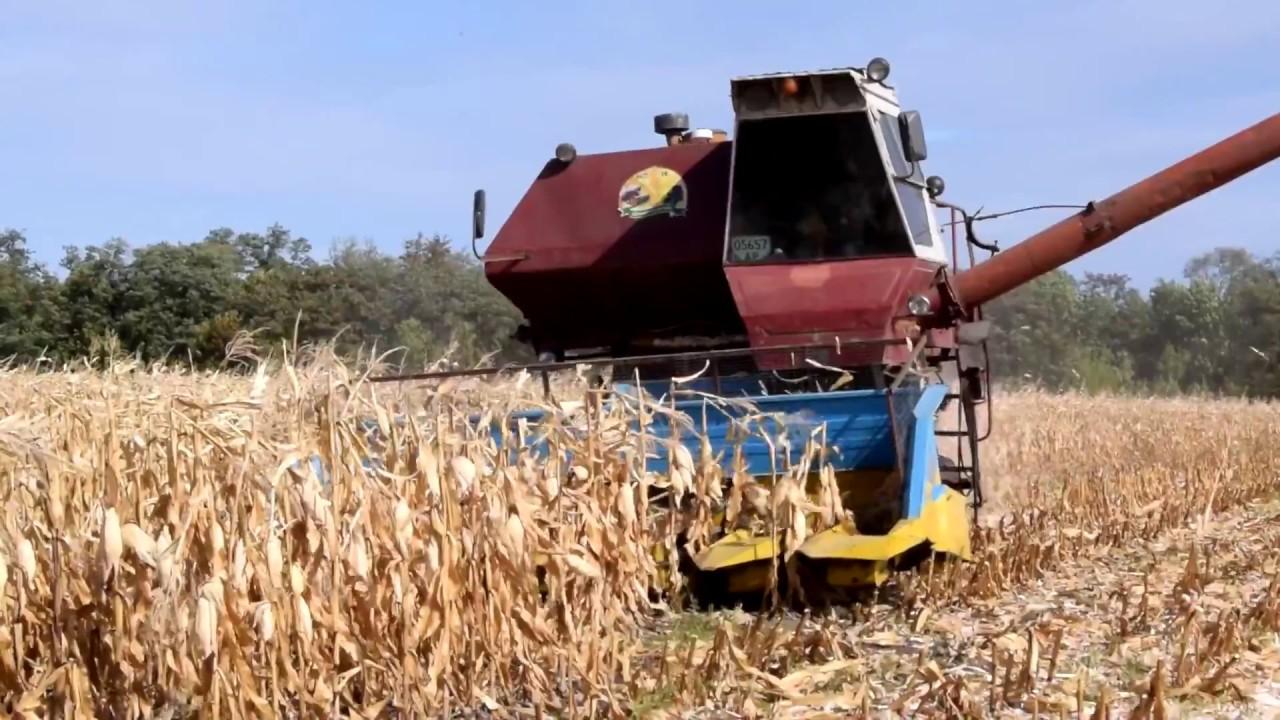 Черкаські аграрії продовжують збирати урожай
