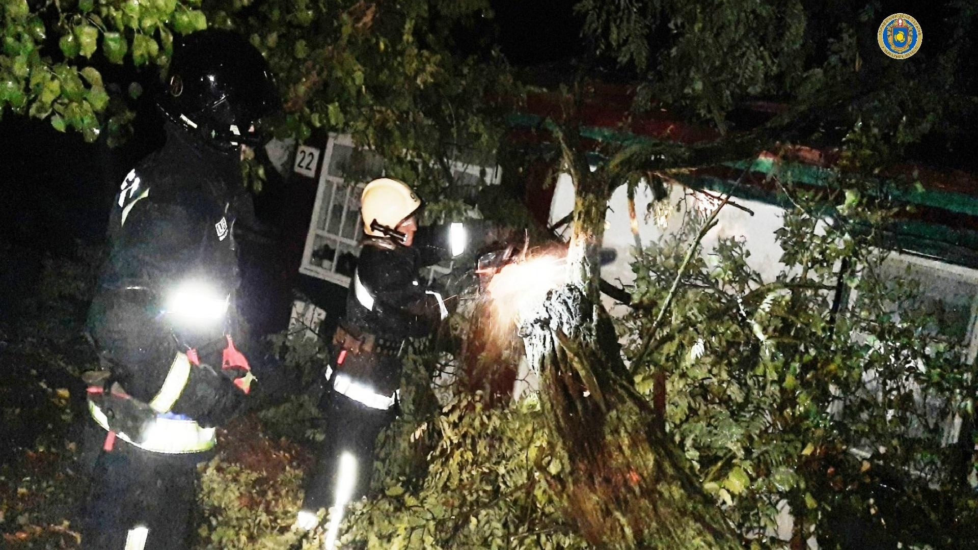 Рятувальники ліквідовували на Черкащині наслідки нічної негоди