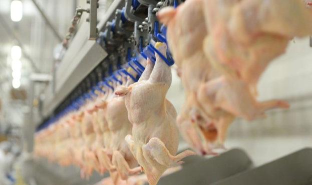 На Тальнівщині припинили незаконне виробництво харчових продуктів