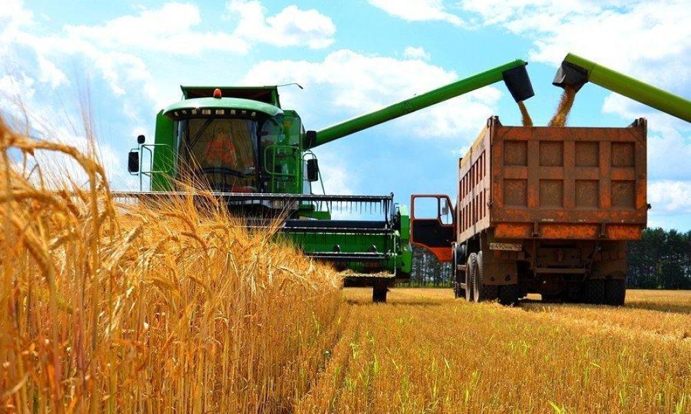 На Черкащині зібрали урожай на 98%