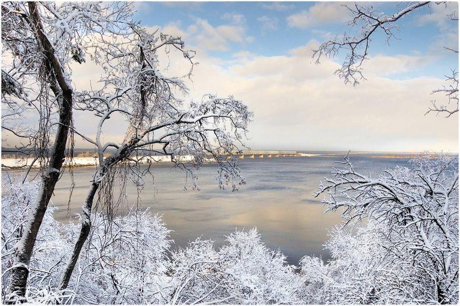 Найближчими днями на Черкащині прогнозують сніжну та морозну погоду