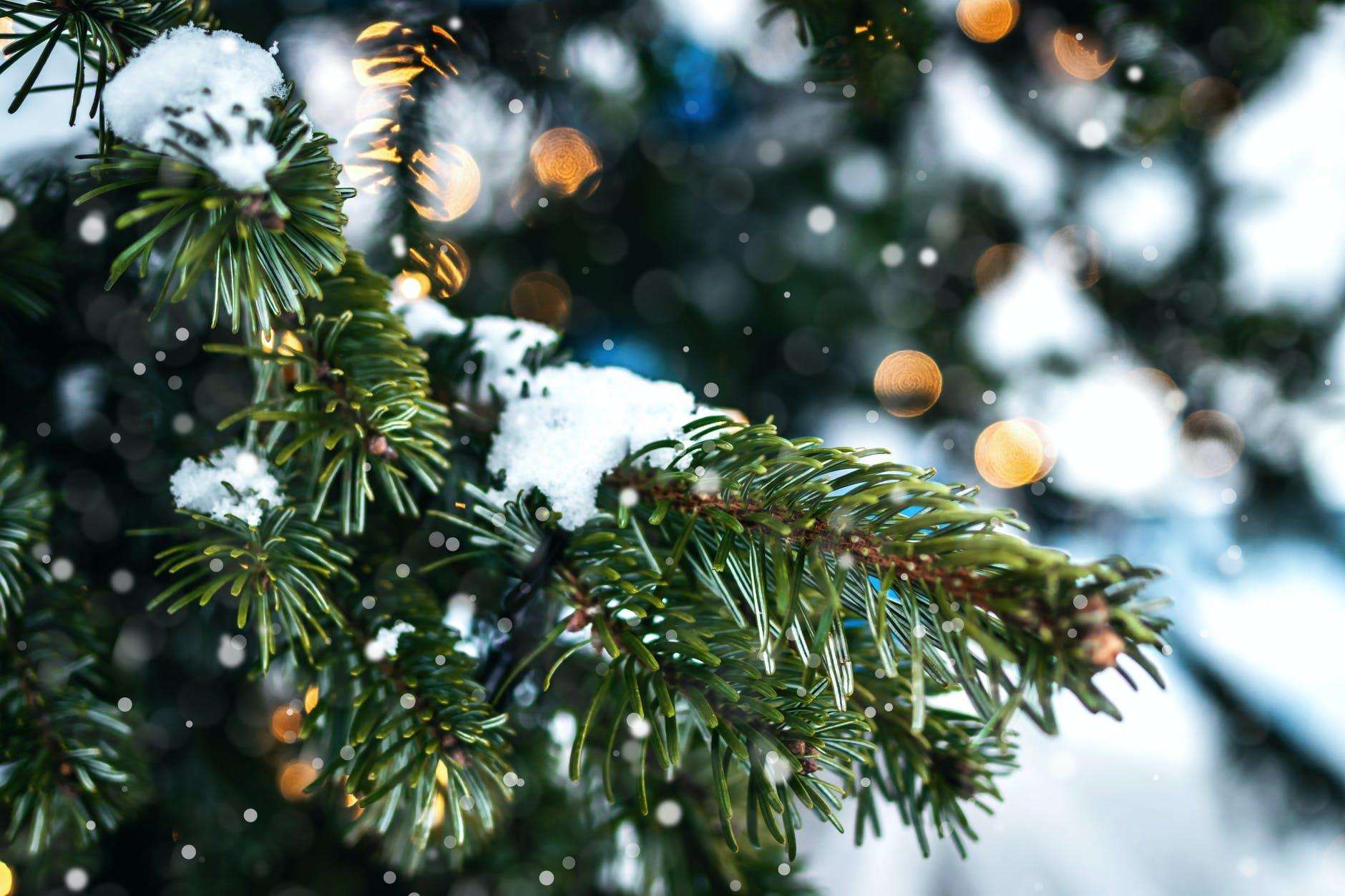 Сьогодні на Черкащині прогнозують хмарну погоду з дощем та снігом