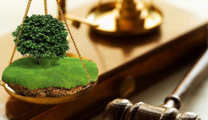 На Черкащині минулого місяця продали права оренди сімох земельних ділянок