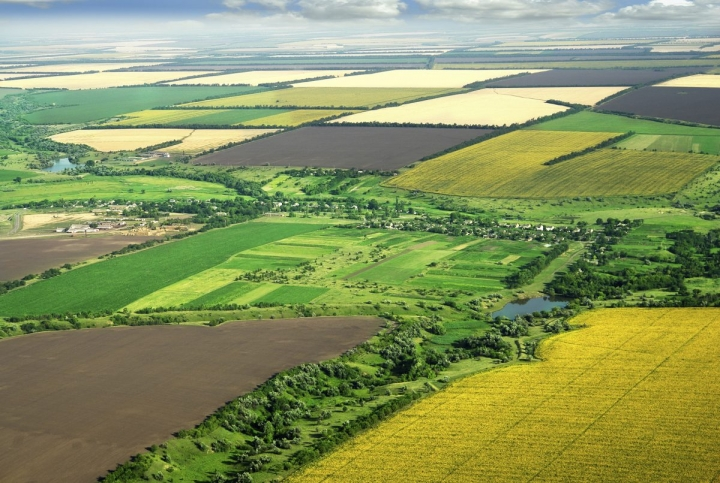 На Черкащині завершився перший етап передачі землі в комунальну власність громадам