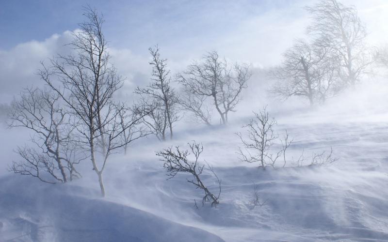 Після снігопадів на Черкащину прийдуть сильні морози