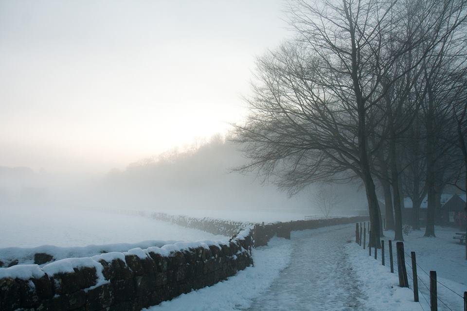 Удень – невеликий сніг, а на дорогах ожеледиця: прогноз на п'ятницю