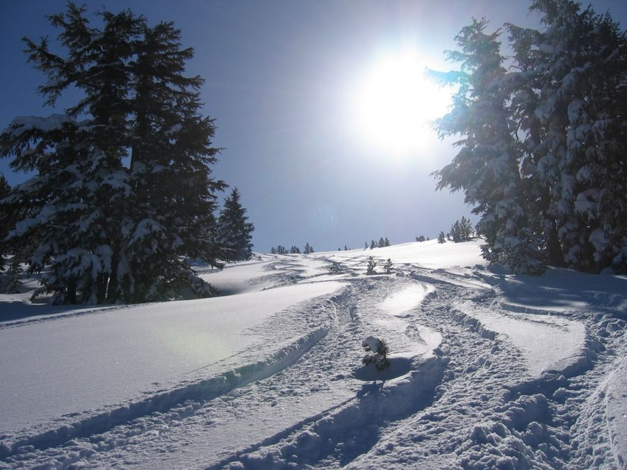 Ближче до вихідних у регіоні посиляться морози