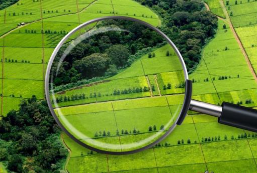 На Черкащині триває впровадження земельної реформи