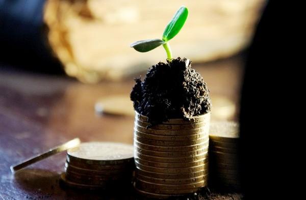 Середньомісячна зарплата аграріїв Черкащини торік становила 10,6 тисячі гривень