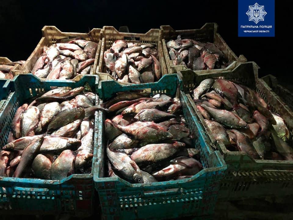 Риби на півтора мільйона гривень: поліція спіймала браконьєрів