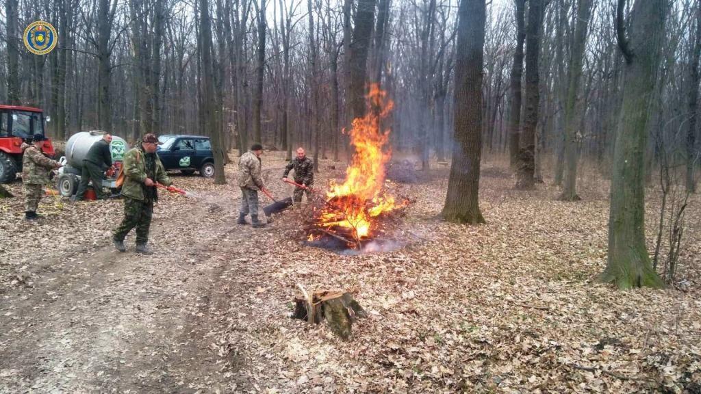 Рятувальники та лісники Черкащини провели спільні навчання