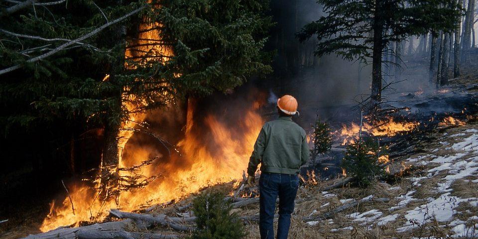 Як штрафуватимуть черкащан за пожежі в екосистемах