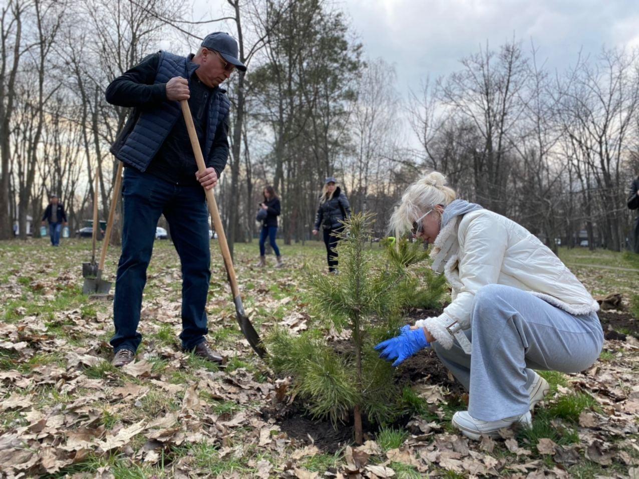 У черкаських парках посадили 171 дерево
