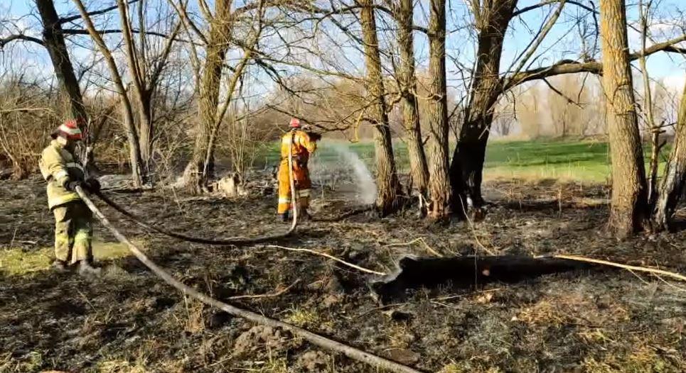Минулої доби на Черкащині чотири рази гасили суху траву (ВІДЕО)