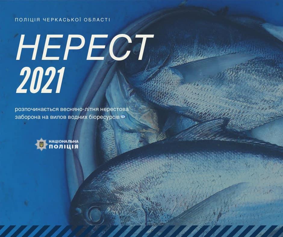 На Черкащині розпочалася нерестова заборона на вилов риби