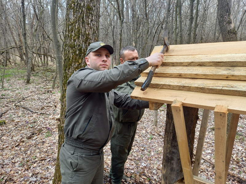 В Уманському лісгоспі облаштували два нові підгодівельні майданчики для диких звірів