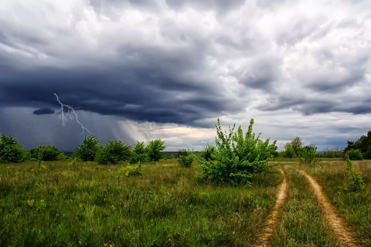 Понеділок на Черкащині обіцяють із дощами та грозами