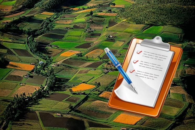 У регіоні за поданими онлайн заявами цього року зареєстрували в ДЗК понад 11 тисяч земельних ділянок