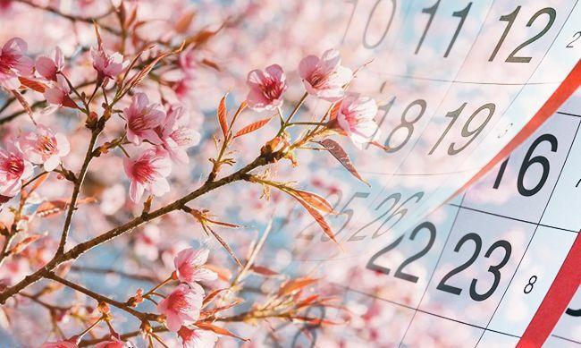 На які зміни та нововведення очікувати українцям у травні