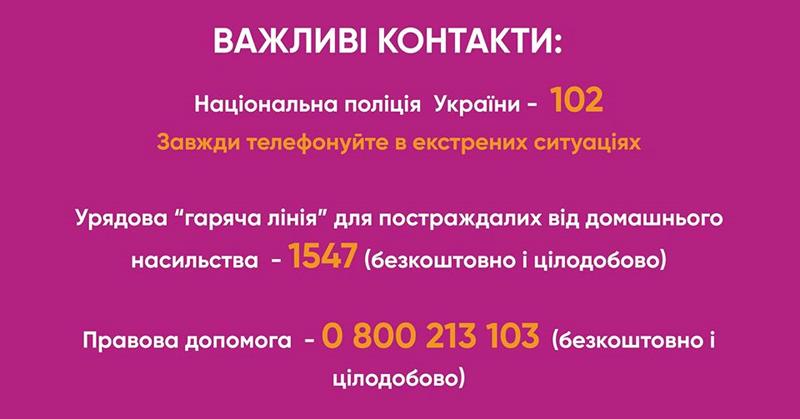 В області діють 11 мобільних бригад соціально-психологічної допомоги жертвам домашнього насильства