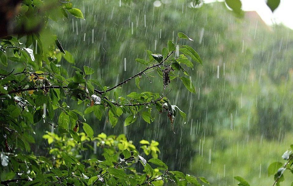 Найближчими днями дощі на Черкащині не припиняться