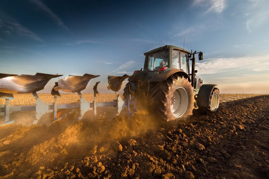 В області завершують посів ранніх зернових та зернобобових