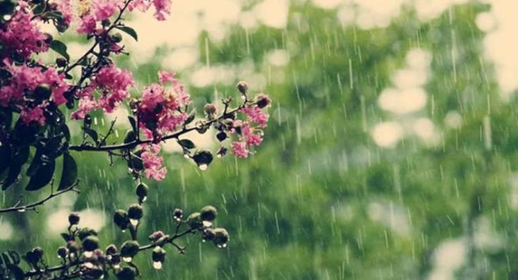 До вихідних на Черкащині прогнозують грозові дощі