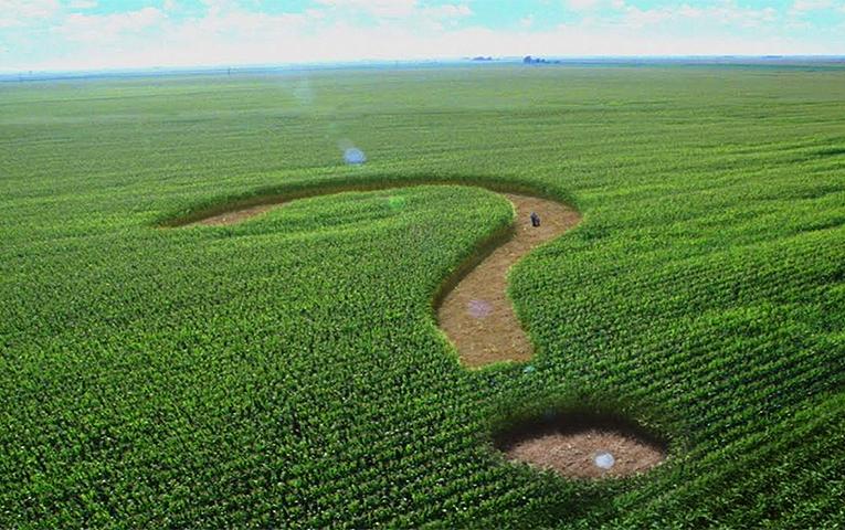 Коли запрацює ринок землі і чого чекати, –прогнози експертів