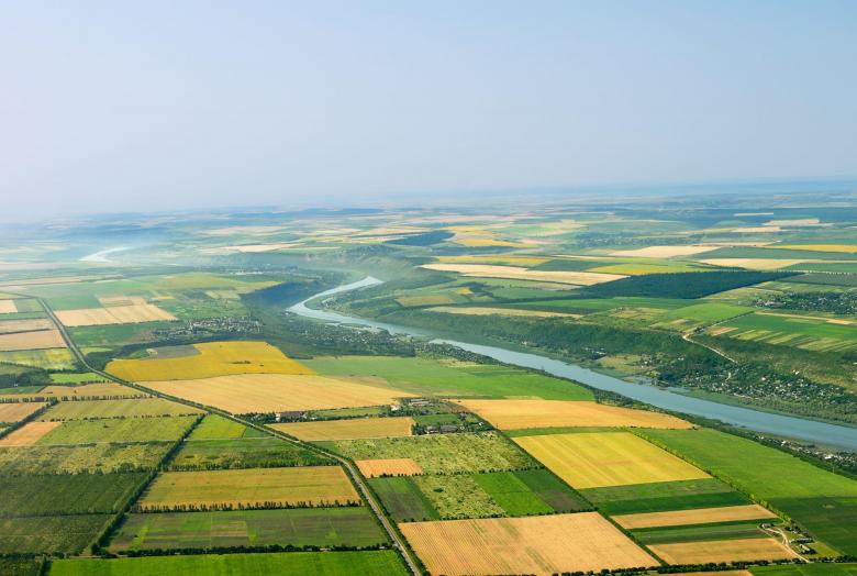 Інспектори Держгеокадастру області знарахували понад мільйон гривень шкоди за порушення земельного законодавства