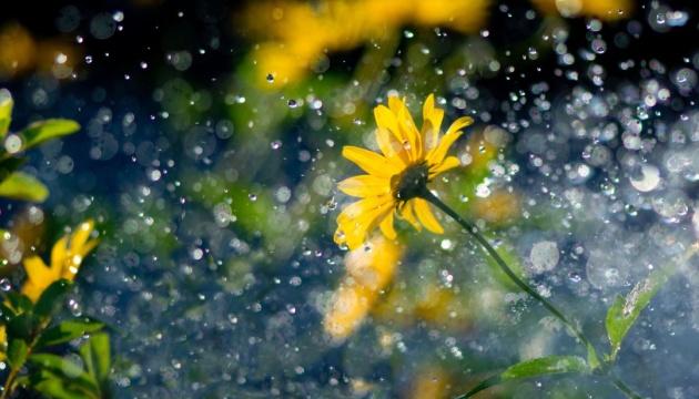 У середу на Черкащині можливі дощі