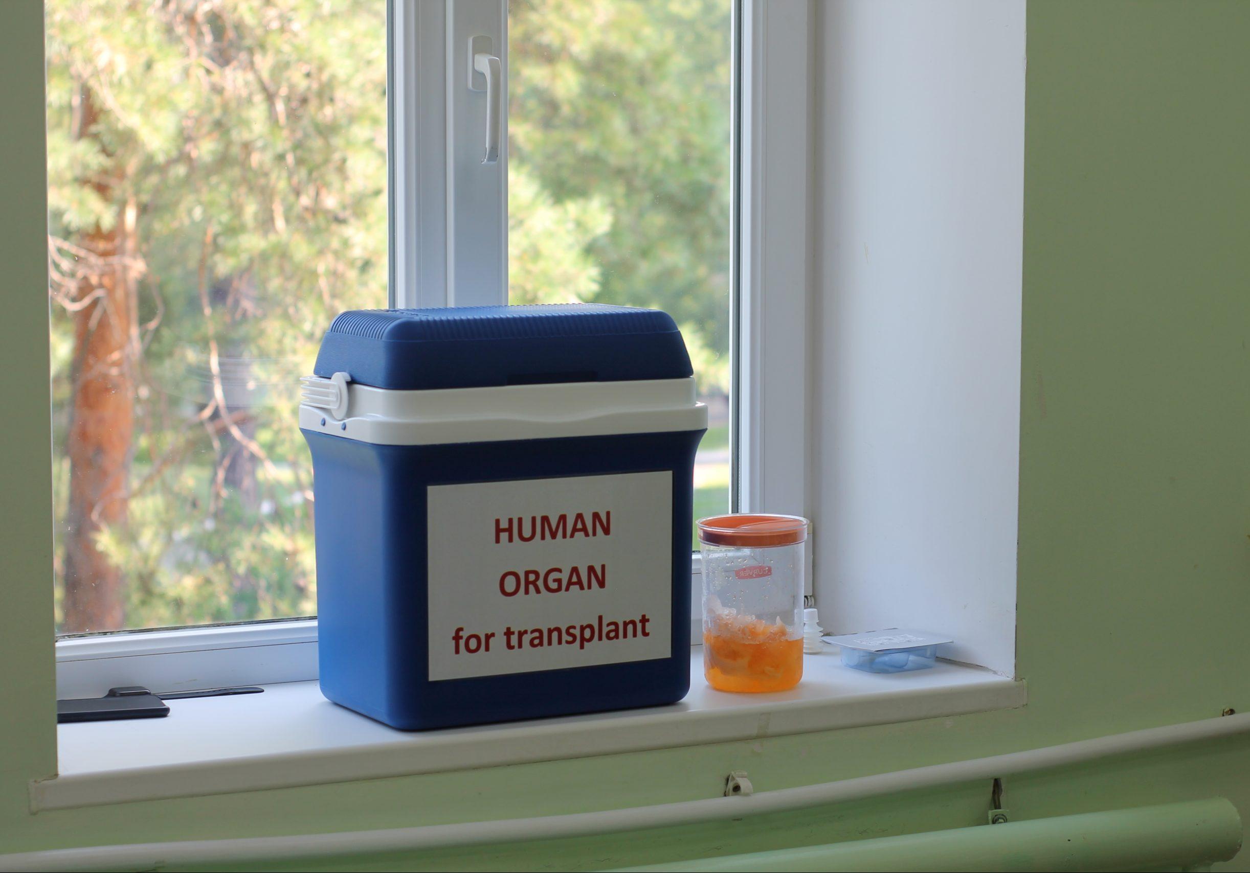 Дати згоду на посмертне донорство можна буде в додатку «Дія»
