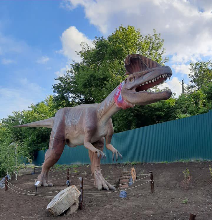 Найбільший в Україні динопарк відкрили в Умані (ФОТО)