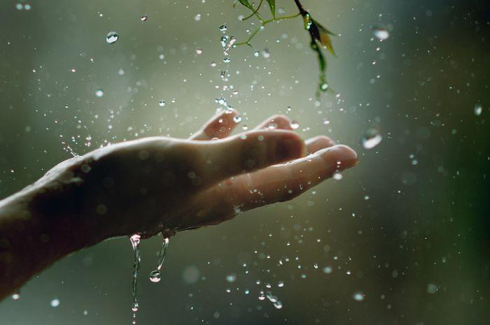 У вівторок в області прогнозують дощі з грозами