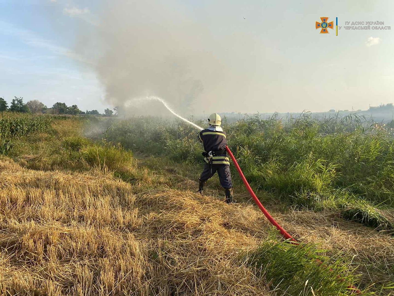 Чотири пожежі сміття й сухостою за добу загасили на Черкащині