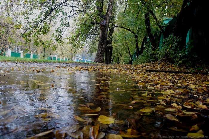 На Черкащині сьогодні буде хмарна погода з невеликим дощем