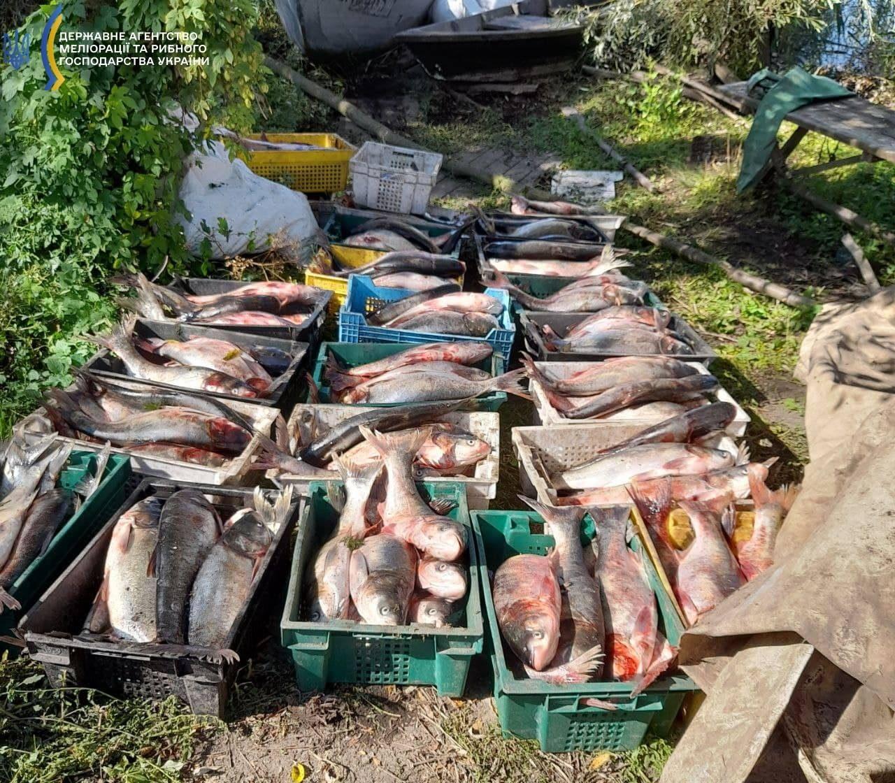 Черкащанин незаконно виловив рибу на понад 50 тисяч гривень