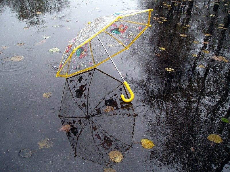 У регіоні прогнозують дощову погоду